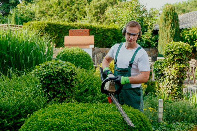 Captain Handy Gardening and Planting services in Toronto