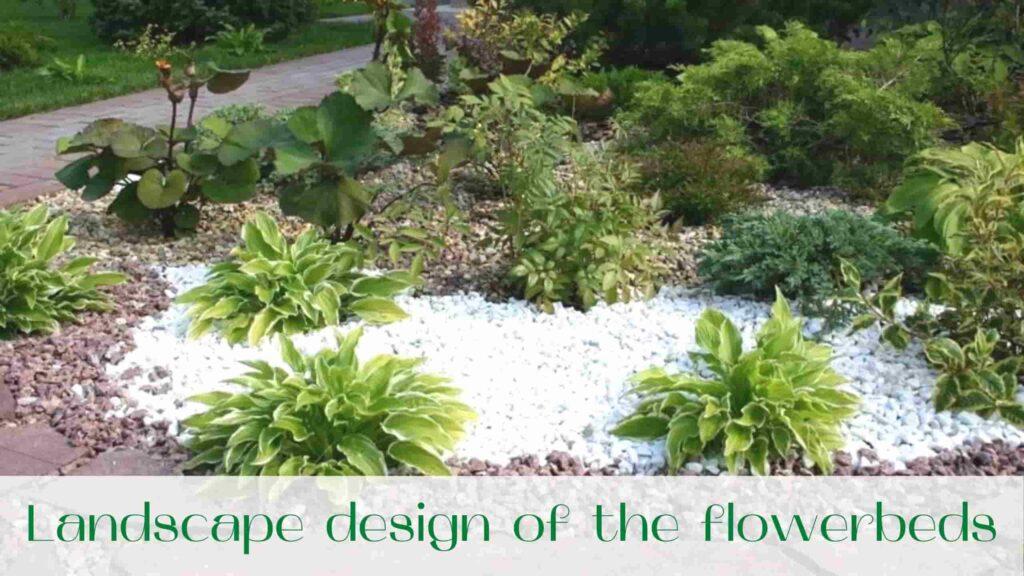 image-Landscape-design-of-the-flowerbeds