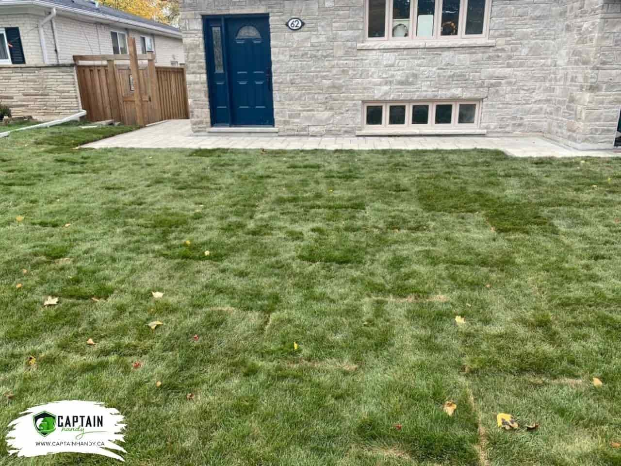 image-backyard-landscaping-Newmarket