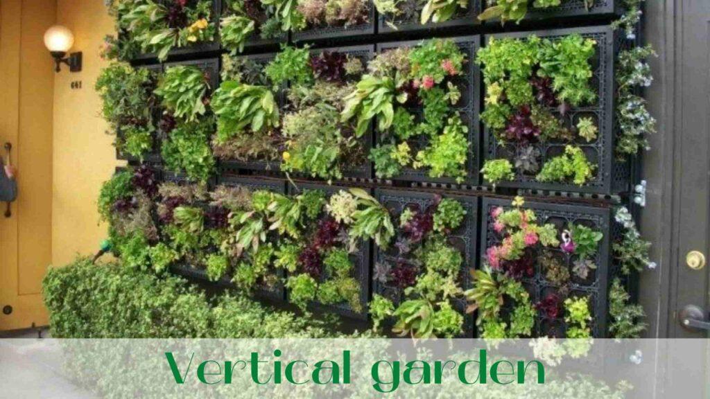 image-Vertical-garden