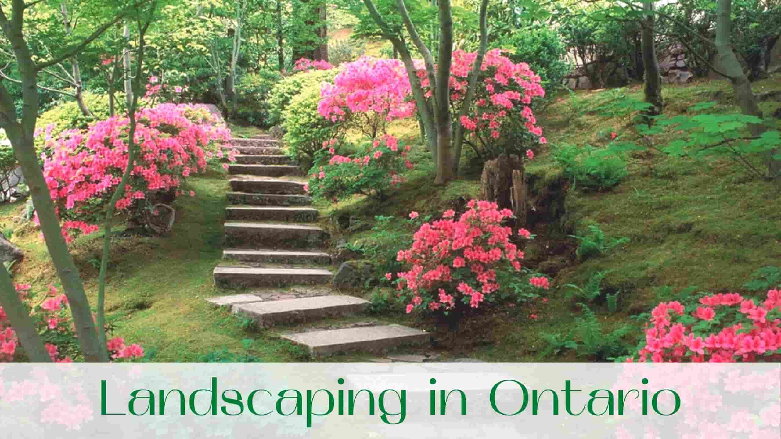 image-landscaping-in-ontario