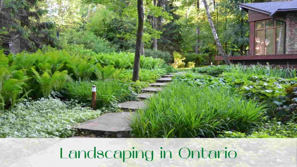 photo-landscaping-in-ontario