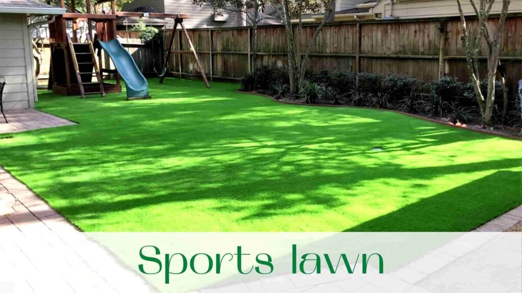 image-sports-lawn-in-Vaughan