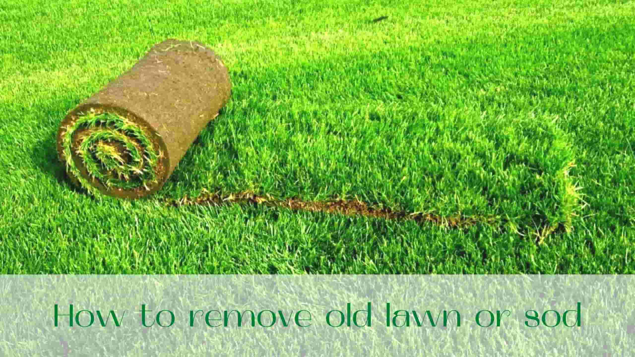 image-How-to-remove-old-lawn-or-sod