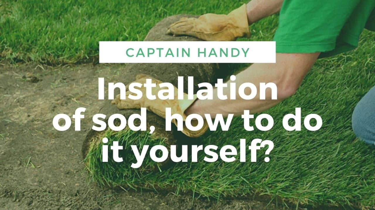 image-Installation-of-sod-how-to-do-it-yourself