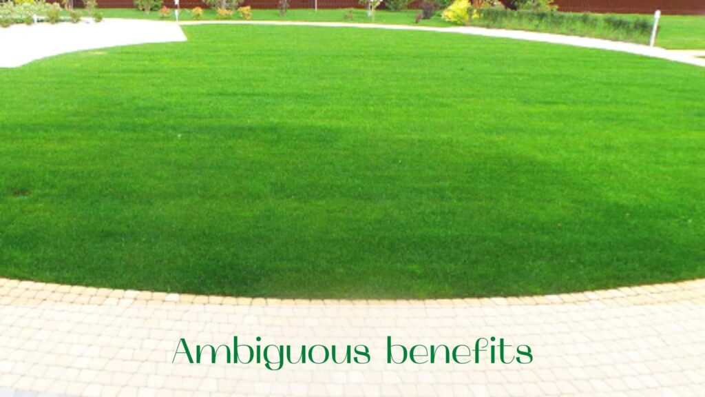 image-Rolled-lawn-or-seeded-lawn-Ambiguous-benefits