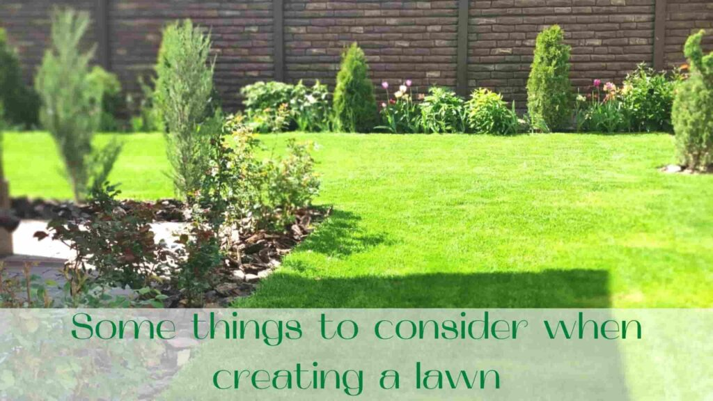 image-Some-things-to-consider-when-creating-a-lawn