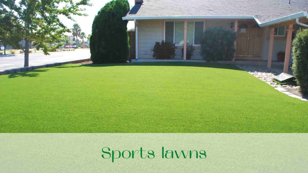 image-Sports-lawns-in-Ontario