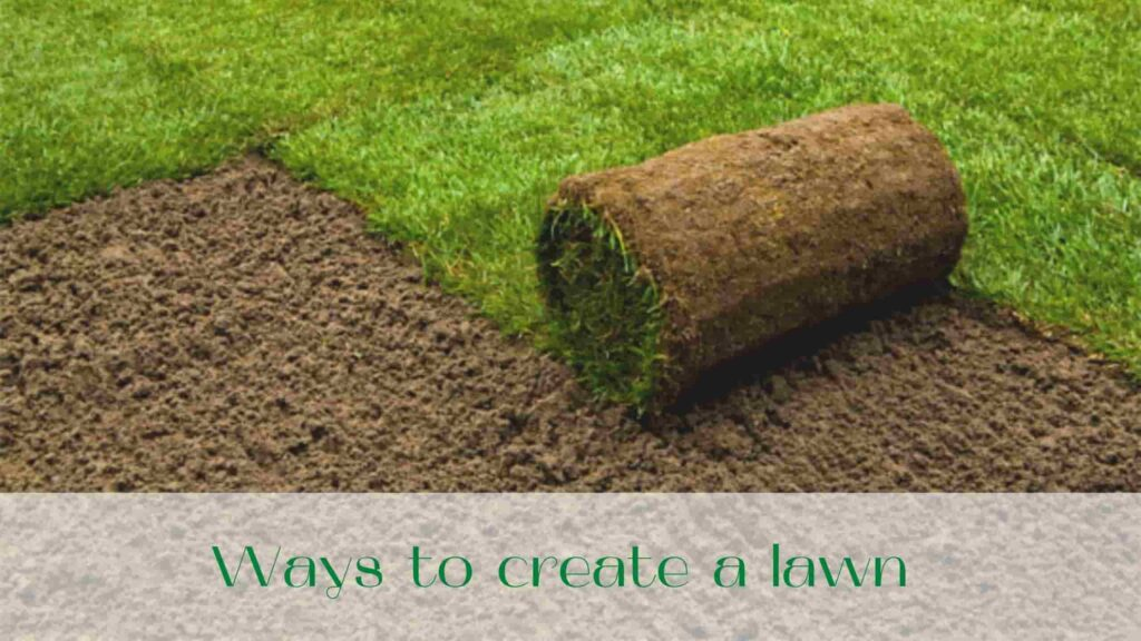 image-Ways-to-create-lawn-in-Toronto